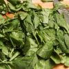 Spinach, frozen, chopped or leaf, cooked, boiled, drained, without salt