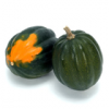 Squash, winter, acorn, cooked, boiled, mashed, without salt